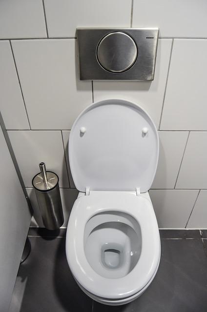 Hebeanlage für das WC
